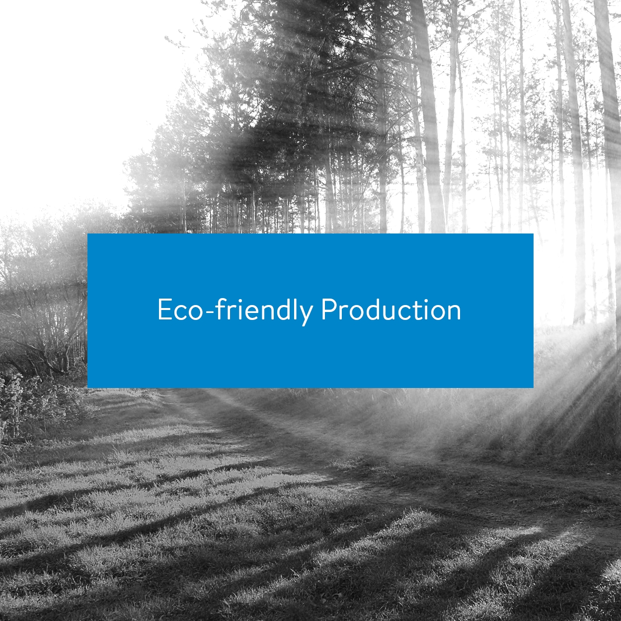 Eco-friendly production